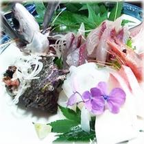【季節の会席料理】 一品料理 飛魚お造り(夏限定)
