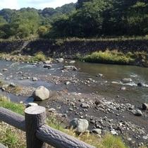 【眺め】目の前の川★
