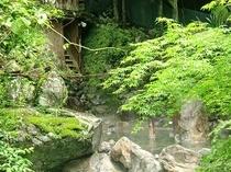 新緑水の神