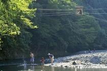 野猿と川遊び