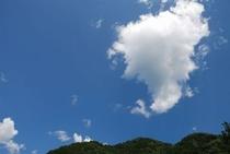 この青い空見てくださいよ~これが 南国土佐です
