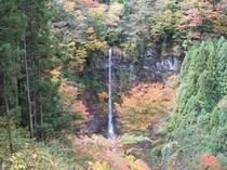 安居渓谷の秋画像5