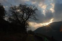 日が落ちる寸前の仁淀川町 ひょうたん桜のシルエット 桜地区より