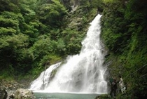 増水中 安居渓谷 飛龍の滝