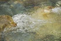 クリアな水がとうとうと流れる長者川