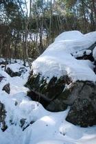 しもなの郷 氷の滝鑑賞ツアー なんとも不思議な場所である 石灰岩の洞窟