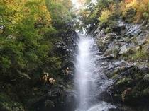 安居渓谷の秋画像6