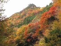 安居渓谷の秋画像3