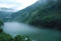 霧のかかる仁淀川 集落と茶畑①