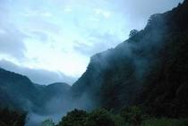 霧のかかる仁淀川 集落と茶畑④