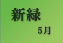 仁淀川町~新緑~