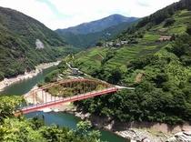 愛媛県との県境の集落 沢渡地区 仁淀川の美しさ 急傾斜地に広がる茶畑