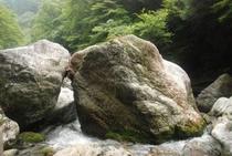 夏の中津渓谷 巨石が折重なる
