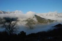 ひょうたん桜で有名な桜地区 見える景気は対岸の宗津地区の山3宗津地区の山2