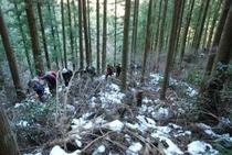 しもなの郷 氷の滝鑑賞ツアー 最初は杉 檜の植林の中を突き進む