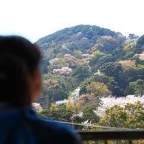 窓から望む色めいた山々