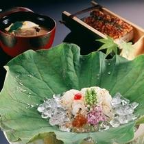 【夏 料理イメージ】京都・丹後の海の幸と、涼を感じさせる見た目をお楽しみ下さい