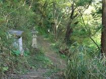 五百仏山(いよぶさん)の遊歩道