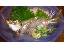 釣れた魚を料理しました。