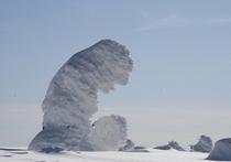 樹氷スノーシュートレッキング(東南東に歩いて30分のモンスター)体験00