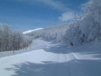 樹氷/ブナ林歩くスキーツアーコース1
