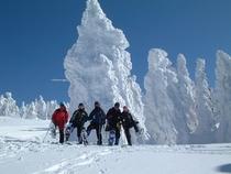 樹氷スノーシュートレッキング(スタート地点の大きなアイスモンスター)05