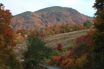 蔵王エコーラインの紅葉(標高1300m)