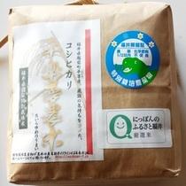 お土産用コシヒカリ1KG