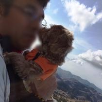 伊豆高原の中心で愛をさけぶ【ププちゃん@大室山リフト】