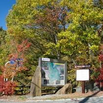 *【イベント】ハイキングや登山中には、周りの景色もお楽しみ下さい。