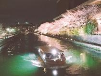 【30分で行ける場所】岡崎疎水の十石船めぐり♪