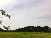 【梅小路公園】朝RUNに、夕方お散歩に適した公園です。