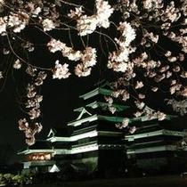 松本城の夜桜会