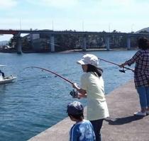 港がすぐ横だから、気軽に釣りができます!もちろん釣れたら夕食になります。