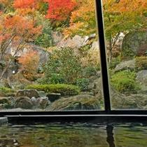 当館の内湯からの紅葉
