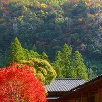 当館と耶馬渓の紅葉