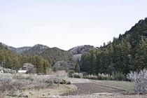 当館から見た『里山&田園風景』