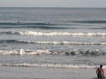 ホテル近くの海岸でサーフィンができます