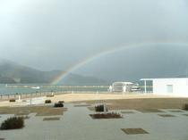 観光船と虹