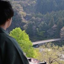 *お部屋から見る眺望と多摩川の流れる音にこころ洗われるよう・・・