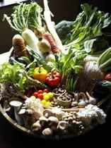 毎月厳選される箱根周辺の野菜達