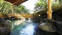 渓谷の野天風呂