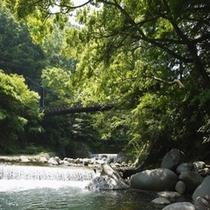 早川にかかる吊橋 宿の入り口