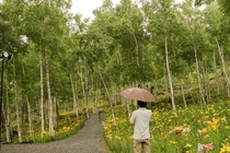 富士見高原花の里2