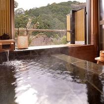 清流を望む半露天風呂付客室