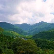 天城山(1406m)を歩く。日本百名山のひとつ。