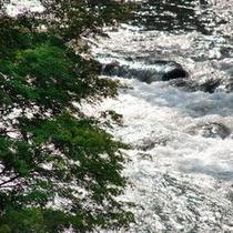 ◆風景◆狩野川