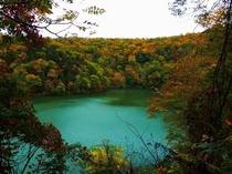 季節:秋の半月湖