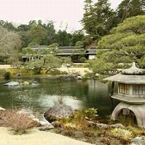 庭園風景(中央池を望む)
