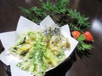 *【山菜の天ぷら】地元で採れた山菜を、天ぷらでカラッと揚げました。